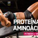 Proteínas vs Aminoácidos: ¿Es mejor consumir proteína o aminoácidos?