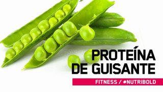 Proteína de Guisante: ¿puede la proteína de guisante construir músculo?