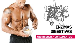 Las enzimas digestivas en la nutrición deportiva